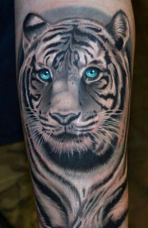 Значение татуировки тигр. Татуировка тигр