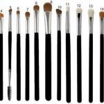 Для чего каждая кисть используется в макияже: